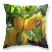 Costa Rica Star Fruit Known As Carambola Throw Pillow