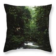 Costa Rica Waterfall In The Carocavado Throw Pillow