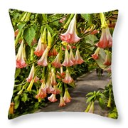 Costa Rica Wedding Bells Throw Pillow
