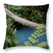 Costa Rican Indiana Jones Adventure Throw Pillow