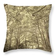 Cosy Path Throw Pillow