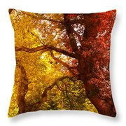 Cosy Shed Throw Pillow by Svetlana Sewell
