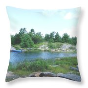 Cottage Country Throw Pillow
