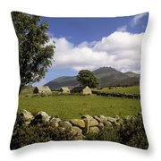 Cottages On A Farm Near The Mourne Throw Pillow by The Irish Image Collection