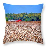 Cotton And The Red Barn Throw Pillow