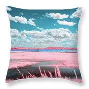 Cotton Candy Marsh Throw Pillow