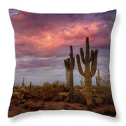 Cotton Candy Pink Sonoran Sunrise  Throw Pillow