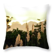 Cotton Candy Sunset 2 Throw Pillow