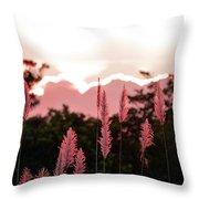 Cotton Candy Sunset 4 Throw Pillow
