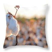 Cotton Field 14 Throw Pillow