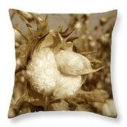Cotton Sepia Throw Pillow