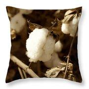 Cotton Sepia2 Throw Pillow
