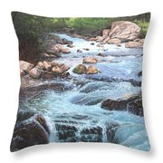 Cotton Wood Creek #4 Throw Pillow