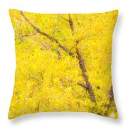 Cottonwood Colors  Throw Pillow