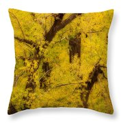 Cottonwood Fall Foliage Colors Abstract Throw Pillow