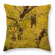 Cottonwood Fall Foliage Colors Throw Pillow