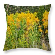 Cottonwood Pass Gold Viii Throw Pillow
