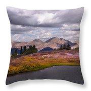 Cottonwood Pass Throw Pillow