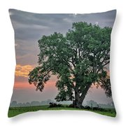 Cottonwood Pasture 2 Throw Pillow