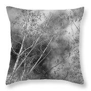 Cottonwood Skies Throw Pillow