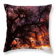 Cottonwood Sunset Silhouette Throw Pillow