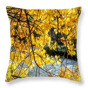 Cottonwood Tree Along The River Throw Pillow