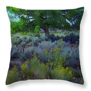Cottonwood Tree In Old Field Throw Pillow