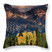 Cottonwoods Fir Trees Fall Color Grand Tetons Nat Throw Pillow by Dave Welling