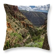 Cottonwoods In The Canyon Throw Pillow