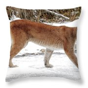 Cougar On The Prowl Throw Pillow