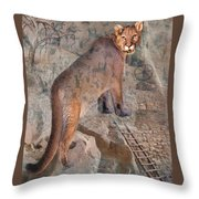 Cougar Rocks, Southwest Mountain Lion Throw Pillow