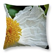 Coulter's Matilija Poppy In Rancho Santa Ana Botanic Gardens, Claremont-california  Throw Pillow
