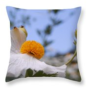 Coulter's Poppy 4 Throw Pillow
