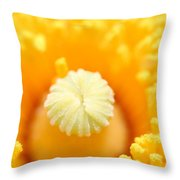 Coulter's Poppy 5 Throw Pillow