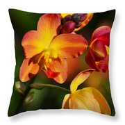 Count Your Blessings Throw Pillow by Melanie Moraga