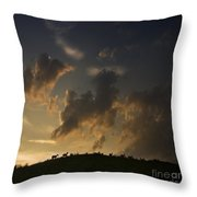Counting The Sheep Before Sleeping Throw Pillow