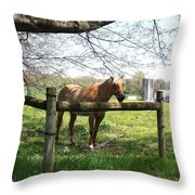 Country Throw Pillow