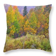 Country Colors Throw Pillow