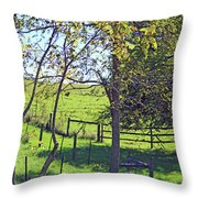 Country Green Throw Pillow