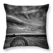 Country High Throw Pillow by Evelina Kremsdorf