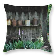 Country Jugs Throw Pillow