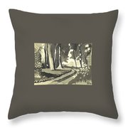Country Lane In Evening Shadow Throw Pillow