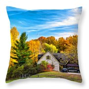 Country Living 2 - Paint Throw Pillow