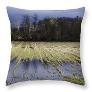 Country Living Eh Throw Pillow