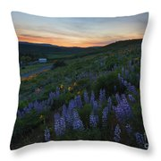 Country Meadow Sunset Throw Pillow