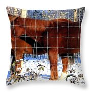 Country Pals Throw Pillow