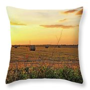 Country Pasture At Sunset Throw Pillow