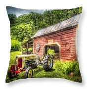Country Reds Throw Pillow