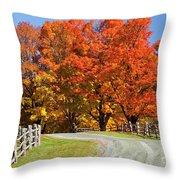 Country Road Autumn Throw Pillow