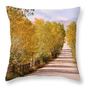 Country Road Autumn Fall Foliage View Of The Twin Peaks Throw Pillow